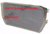 821 Ducati Monster Radiator Guard