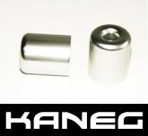 Kaneg Bar Ends - Silver - Yamaha YZF600 (99-05)